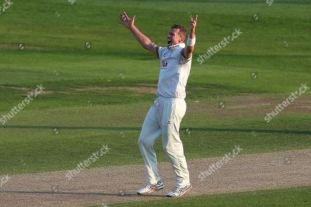 Stock Photo of Peter Siddle of Essex celebrates taking the wicket of Jimmy Adams during Essex CCC vs Hampshire CCC, Specsavers County Championship Division 1 Cricket at The Cloudfm County Ground on 31st August 2018