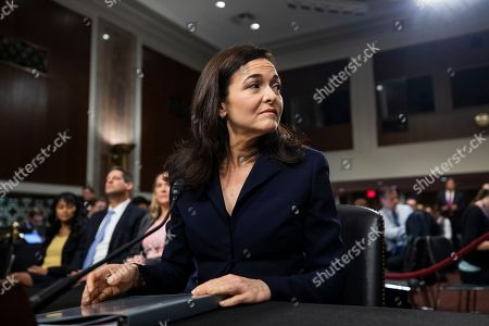 COO of Facebook Sheryl Sandberg prepares to testify before a Senate Intelligence Committee hearing on 'foreign influence operations and their use of social media platforms' in the Dirksen Senate Office Building in Washington, DC, USA, 05 September 2018. Lawmakers are expected to ask the top executives what measures they are implementing to protect their online content from Russian propaganda and political censorship.  (Google) Larry Page was invited to testify but did not show.