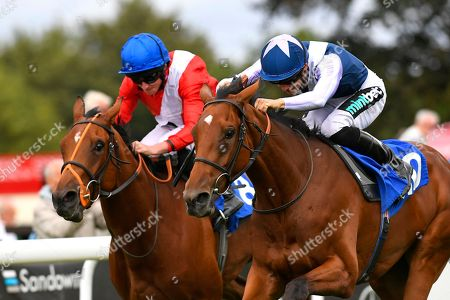 Winner of The Bob McCreery Memorial EBF Quidhampton Maiden Fillies' Manuela De Vaga (nearside) ridden by Harry Bentley and trained by Ralph Beckett during the Bathwick Tyres & EBF Race Day at Salisbury Racecourse on 6th September 2018