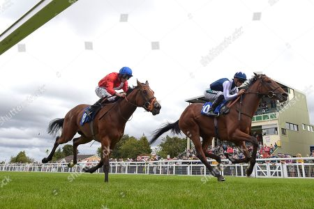 Winner of The Bob McCreery Memorial EBF Quidhampton Maiden Fillies'  Stakes Manuela De Vega ridden by Harry Bentley and trained by Ralph Beckett during the Bathwick Tyres & EBF Race Day at Salisbury Racecourse on 6th September 2018