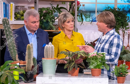Ruth Langsford and Eamonn Holmes with David Domoney