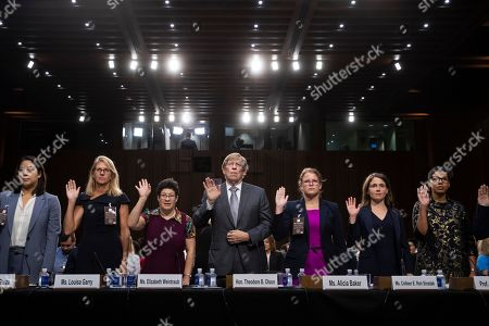 Rochelle Garza, Louisa Garry, Elizabeth Weintraub, Theodore Olson, Alicia Baker, Colleen E. Roh Sinzdak, Melissa Murray. A panel of experts and character witnesses are sworn in before the Senate Judiciary Committee during the final stage of the confirmation hearing for President Donald Trump's Supreme Court nominee, Brett Kavanaugh, on Capitol Hill in Washington, . From left are attorney Rochelle Garza, Louisa Garry, a friend since college, Elizabeth Weintraub, a disability advocate, former Solicitor General Theodore Olson, Alicia Baker, Colleen E. Roh Sinzdak, former student under Kavanaugh, and professor Melissa Murray