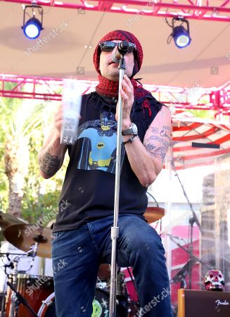 Stock Image of Gin Blossoms - Robin Wilson