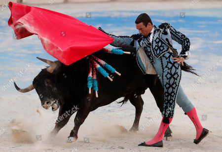 Spanish bullfighter Jose Maria Manzanares performs with a bull during his bullfight held on the occasion of the 'Feria du Riz' in Arles, southern France, 08 September 2018. Bulls from Victoriano Del Rio ranch are presented for this bullfight.