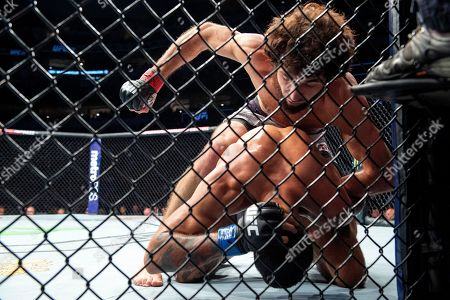 Stock Picture of Zabit Magomedsharipov, top, winds up to punch Brandon Davis during their featherweight mixed martial arts bout at UFC 228, in Dallas