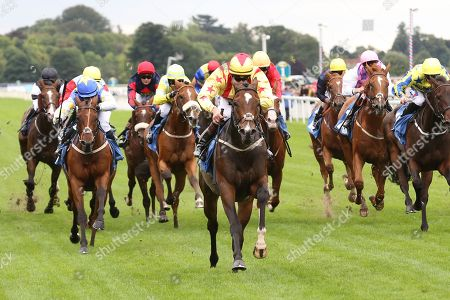 FRANCIS XAVIER (6) ridden by Clifford Lee and trained by Kevin Frost winning The Hanson Springs Stakes over 1m 2f (£19,000) during the Newby and the Press Family Raceday at York Racecourse, York. Picture by Mick Atkins