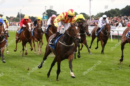 FRANCIS XAVIER (6) ridden by Clifford Lee and trained by Kevin Frost winning The Hanson Springs Stakes over 1m 2f (£19,000)during the Newby and the Press Family Raceday at York Racecourse, York. Picture by Mick Atkins