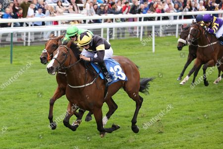 LADIES FIRST (13) ridden by Scott McCullogh, trained by Mick Easterby and owned and bred by Mr Reg Bond winning The Eventmasters.co.uk Apprentice Handicap Stakes over 7f (£17,000)  during the Newby and the Press Family Raceday at York Racecourse, York. Picture by Mick Atkins