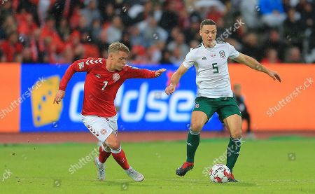 James Chester of Wales  and Viktor Fischer of Denmark