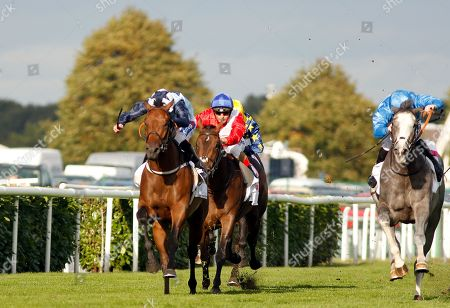 Horse Racing 13 Sep 2018 Stock Photos (Exclusive) | Shutterstock