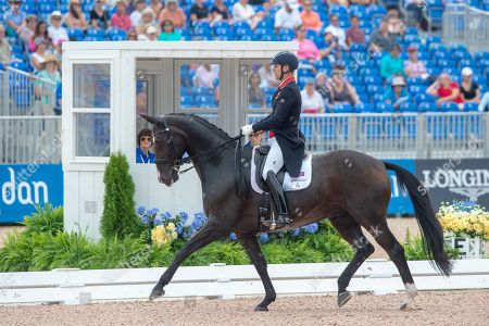 Stock Photo of Spencer WILTON (GBR) & SUPER NOVA II - Dressage - Team Competition & Individual Qualifier (Grand Prix) - FEI World Equestrian Games- Tryon 2018 - Tryon, North Carolina, USA - 12 September 2018