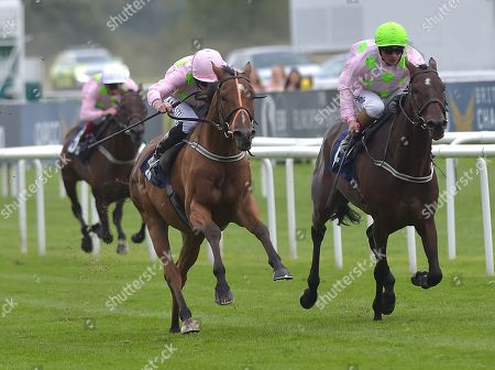 (L) Thomas Hobson (Ryan Moore) wins The Doncaster Cup Stakes from (R) Max Dynamite (Andrea Atzeni).