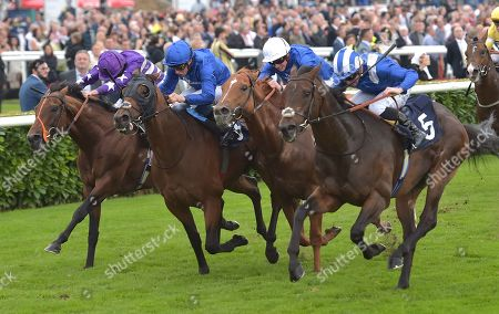 (R) Mustashry (Jim Crowley) wins The Alan Wood Plumbing and Heating Park Stakes from (2nd L) DBai (William Buick) and (L) Oh This Is Us (Ryan Moore) and (2nd R) Dutch Connection (James Doyle).