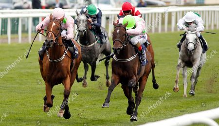 THOMAS HOBSON (left, Ryan Moore) beats MAX DYNAMITE (right) in The Doncaster Cup Stakes Doncaster