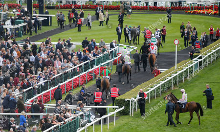 THOMAS HOBSON and Ryan Moore Win the Doncaster Cup Stakes (Group 2) (British Champions Series) second MAX DYNAMITE and Andrea Atzeni (both trained by Willie Mullins and owned by Mrs S Riccci) Doncaster Racecourse