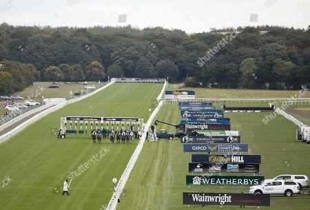 Editorial photo of Horse Racing - 14 Sep 2018