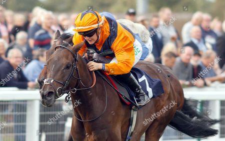 Horse Racing - 20 Sep 2018