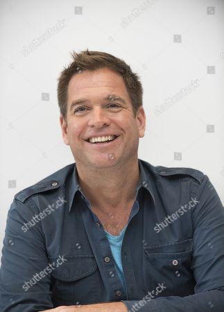 Stock Image of Michael Weatherly