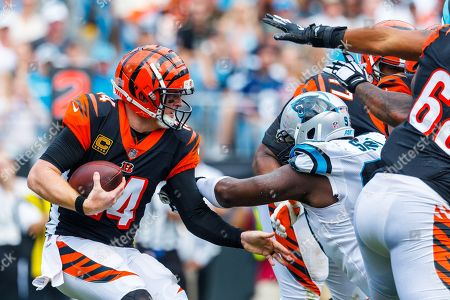 Cincnnati Bengals v Carolina Panthers