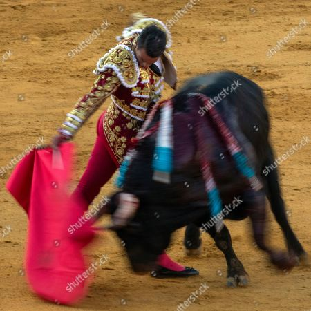 Stock Photo of A slow exposure picture shows Spanish bullfighter Jose Maria Manzanares as he executes a pass on a fighting bull from the Juan Pedro Domecq ranch during the bullfight at San Miguel Fair in Seville in Seville, southern Spain, 30 September 2018.