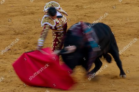 A slow exposure picture shows Spanish bullfighter Jose Maria Manzanares as he executes a pass on a fighting bull from the Juan Pedro Domecq ranch during the bullfight at San Miguel Fair in Seville, southern Spain, 30 September 2018.