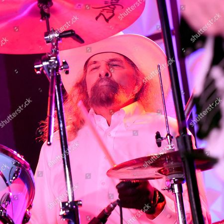 The Artimus Pyle Band