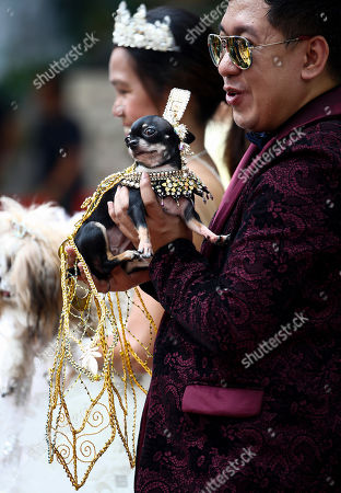 Dog owner Adrian Cabuhad holds his Chihuahua, Coco Chanel, during a small gathering of pet owners ahead of World Animal Day in Quezon City, Philippines, 03 October 2018. World Animal Day is observed annually on 04 October in order to raise global awareness for the welfare of animals. In the Catholic religion, World Animal Day coincides with the feast day of St. Francis of Assisi, the patron saint of animals.