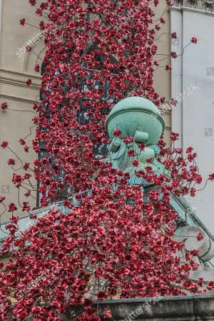 Weeping Window by artist Paul Cummins and designer Tom Piper at IWM London.