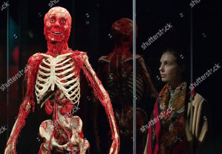 Preview of Body Worlds exhibition which opens at the London Pavilion on October 6th. Created by Dr Gunther Von Hagens and his Co-Director and wife, Dr Angelina Whalley.With over 200 exhibits it includes 25 full body plastinates.