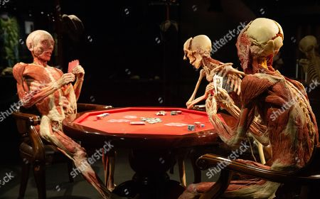 Poker-Playing Trio famously seen in the James Bond Film 'Casino Royale'. Preview of Body Worlds exhibition which opens at the London Pavilion on October 6th. Created by Dr Gunther Von Hagens and his Co-Director and wife, Dr Angelina Whalley.With over 200 exhibits it includes 25 full body plastinates.