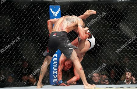 Tony Ferguson, top, fights Anthony Pettis during a lightweight mixed martial arts bout at UFC 229 in Las Vegas