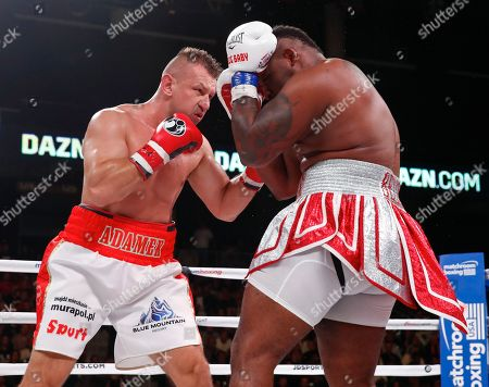 Tomasz Adamek, left, of Poland, hits Jarrell Miller during a heavyweight boxing bout, in Chicago