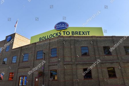 Stock Picture of Millionaire owner of Pimlico Plumbers Charlie Mullins refuses to remove the 'Bollocks to Brexit' banner.