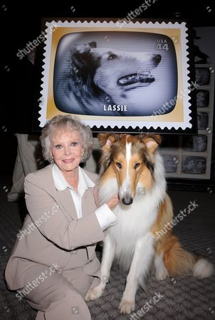Lassie and June Lockhart