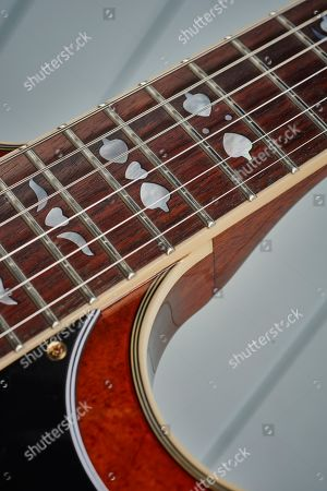 Detail Of The Rosewood Fingerboard On An Epiphone Limited Edition Lee Malia Rd Custom Artisan Outfit Electric Guitar