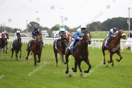 SAM COOKE (9) ridden by Richard Kingscote and trained by Ralph Beckett winning The Elevator Company EBF Novice Auction Stakes over 1m (£15,000)  during the Countryside Raceday, October Finale at York Racecourse, York. Pic Mick Atkins