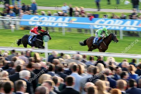 Editorial picture of 13/10/2018., October Finale, York Races - 13 Oct 2018