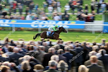 ARROWTOWN (5) ridden by Nathan Evans and trained by Michael Easterby winning The Coral Stayers Handicap Stakes over 2m (£15,000)    during the October Finale meeting at York Racecourse, York. Pic Mick Atkins