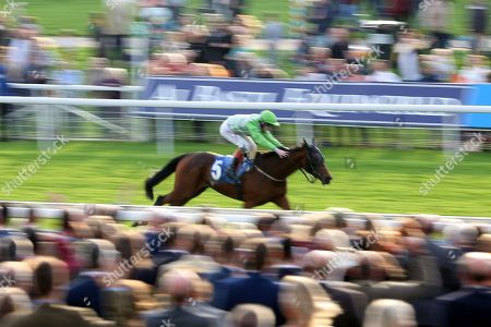Editorial image of 13/10/2018., October Finale, York Races - 13 Oct 2018