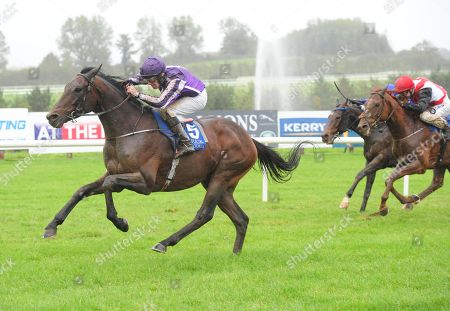 LIMERICK SIR EREC and Michael Hussey win the Listed Martin Molony Stakes. Healy Racing