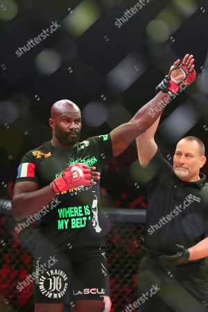 Cheick Kongo is declared the winner over Timothy Johnson after a mixed martial arts bout at Bellator 208, in Uniondale, NY on . Kongo won via first round TKO
