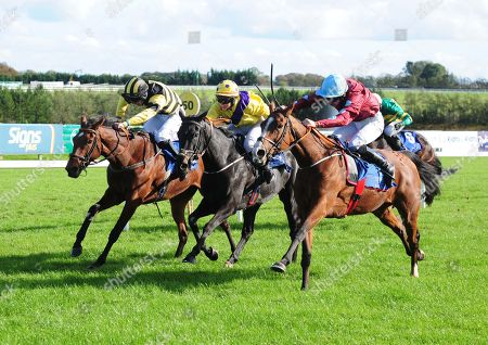 LIMERICK WATER SPRITE and Liam McKenna (right) beat Drakaina (centre) and Lily Trotter (left) to go on and win The Irish Racing Wall Calender 2019 Mares Handicap Hurdle. Healy Racing