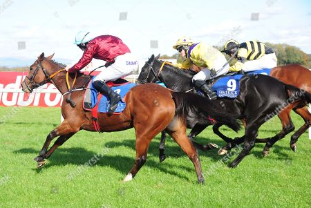 Editorial image of Horse Racing - 14 Oct 2018