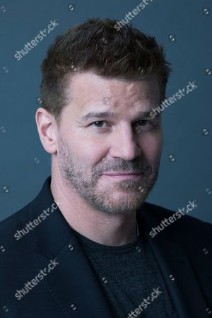 David Boreanaz poses for a portrait on in New York