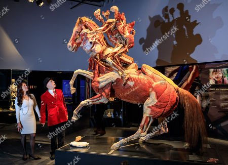 Dr Gunther von Hagens and wife, Angelina Whalley in front of 'The Rearing Horse and Rider'