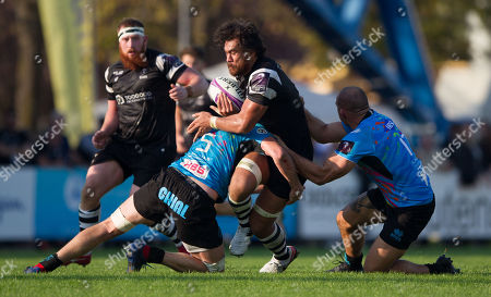 Editorial image of Zebre v Bristol Bears, European Rugby Challenge Cup Pool 4, Stadio Sergio Lanfranchi, Parma, Italy - 20 Oct 2018