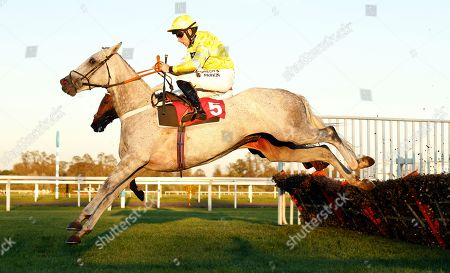 Stock Picture of WALLACE SPIRIT (Jeremiah McGrath) jump the last before throwing the race away on the flat and handing victory to HIDDEN GLEN (farside) Matchbook Best Value Exchange Novices Hurdle Kempton