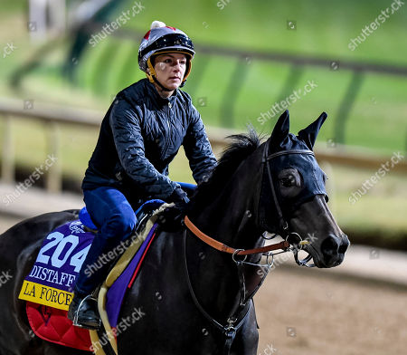 La Force (GER), trained by Patrick Gallagher, exercises in preparation for the Breeders' Cup Distaff at Churchill Downs on October 29, in Louisville, Kentucky. Scott Serio/Eclipse Sportswire/CSM