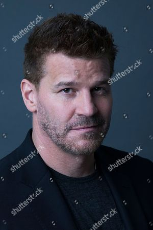 David Boreanaz poses for a portrait in New York