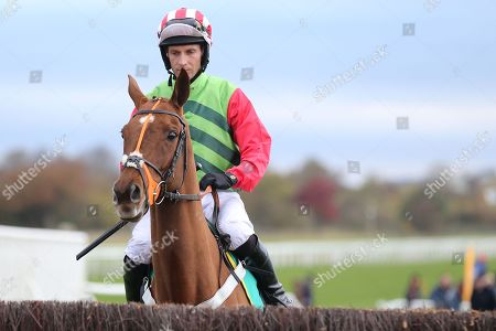 Editorial image of 03/11/2018., The bet365 Meeting, Wetherby Races - 03 Nov 2018